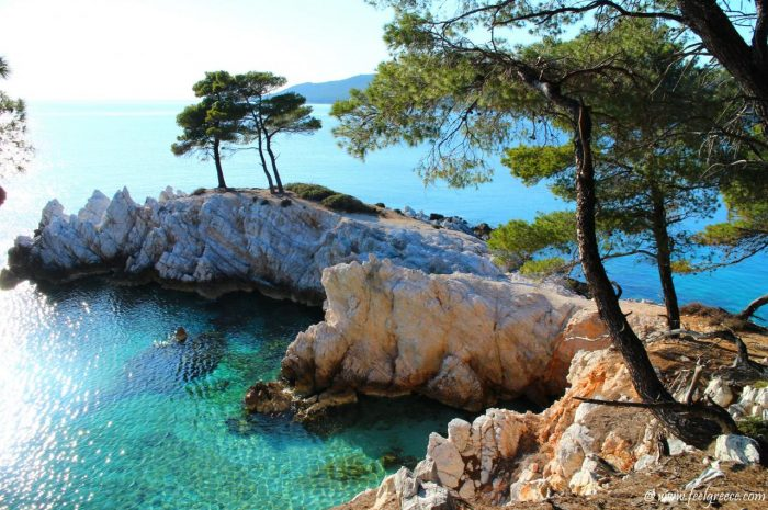 Skopelos-Rent a car- the local route